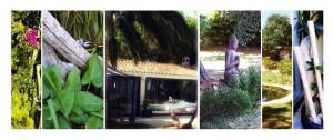 image garden tao
